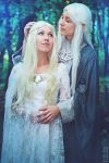 Celeborn and Galadriel - The Lord of the Rings 2 by LeoTakanashi