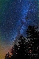 Milky Way and the Pines by PhotoshopAddict89