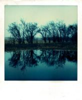 reflection by industrienormal
