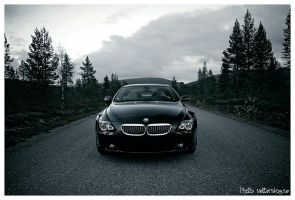 BMW 650 by PvP