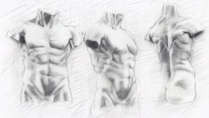 Male figure study by ivaug