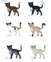 .:Point Adoptable Cats:.OPEN by Hasanti