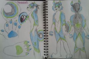 ReinboWulf Traditional Ref by tyler-gf123