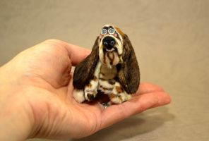Basset hound 'Otis' in my hand by mellisea