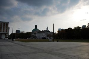 Warsaw.1 by Nema1n