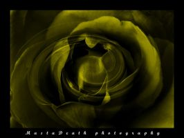 abstract rose 2 by mastadeath