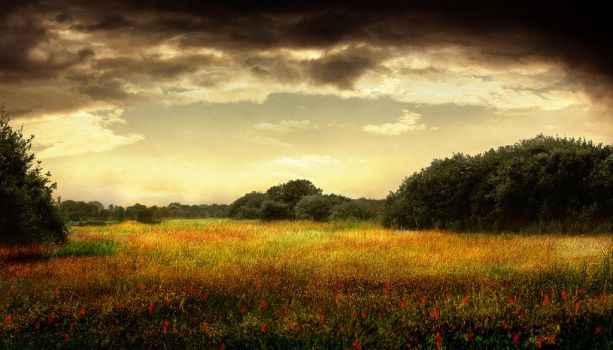 LandscapeII by JacqChristiaan