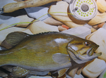 Smallmouth Bass: Colored Pencil by DerBrotkorb