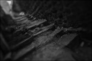 Sudden Enter to a Colorless World by Hermetic-Wings