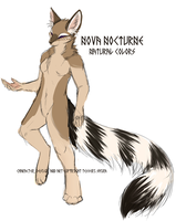 Official Nova Ref Sketch by Tesseri-Shira