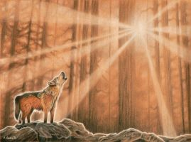 Lone Wolf by Carles
