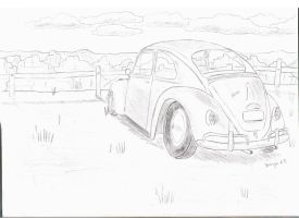 Beetle and canyon by VWStiti