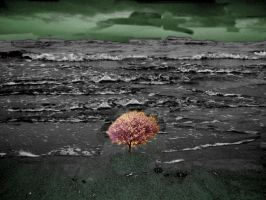 tree in the sand by GothicKitzzy