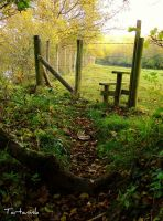 Over the Stile by tartanink