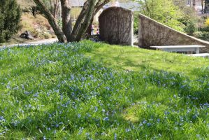 Spring Stock 20 by Malleni-Stock