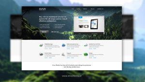 Envy Media - Web Agency by EmilioEx