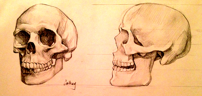 More Skull Practice by CuteC3