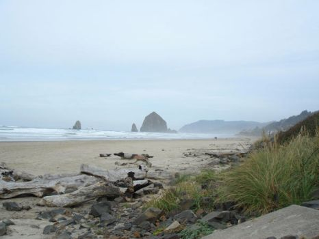 Cannon beach 1 by adderx99