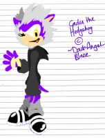 GIFT - Caden the Hedgehog, aged 7 - DRAWN BY HAND by BingotheCat