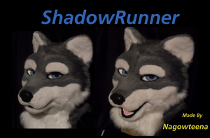 ShadowRunner by nagowteena101