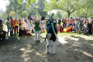 14 Cosplay Picnic On the Common, the Battle Ring 3 by Miss-Tbones
