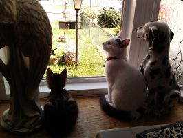 Ronnie And Tigger In The Window by Lovely-LaceyAnn-Art