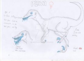 Plava Ref 2015 by I980