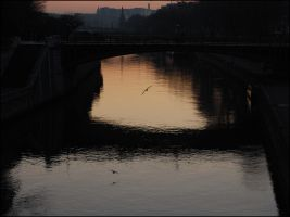 Un matin sur Paris by lucky-april