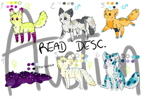 morpher adopts! ONE LEFT by Storm-adopts-13
