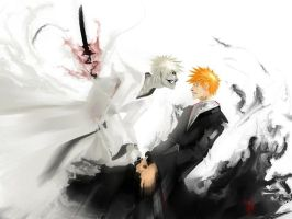Hollow Ichigo Eradication by Tensa-Zangetsu2