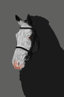 Work In Progress Realism UPDATE by WoodcroftStables