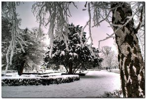 Spa Park In Winter XII by kiebitz