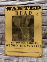 wanted poster by wolfeblackraven
