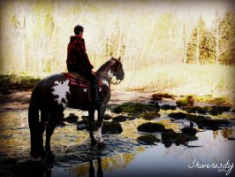 Trail Ride: Looking Yonder by EquusInspiration