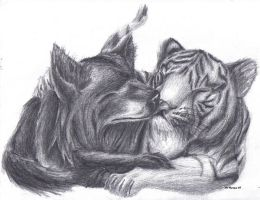 Tiger and Wolf by Mathas