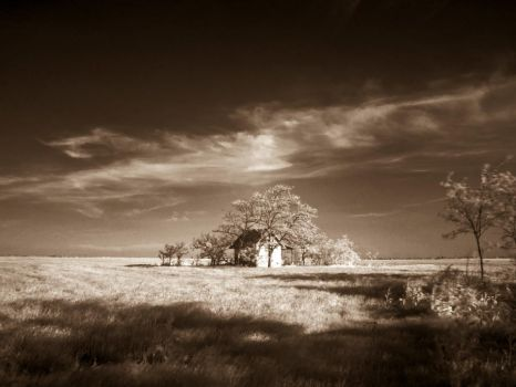 Days of old - sepia by scoubo