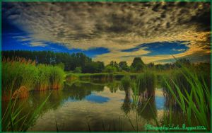 Hungarian landscapes.HDR-picture(photo series)20. by magyarilaszlo