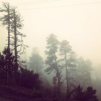 neblina by PaintGirl-just-one
