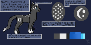 Moonpelt Ref-Sheet- 2013 by dragami