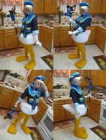 Donald Duck- Views by Hopie-chan