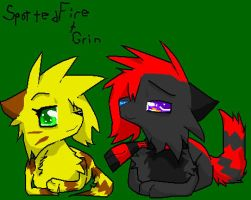 .: Spottedfire and Grin :. by MistyTheCannibal