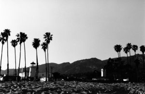 palms and sand by cantrembrto4getu