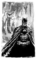 Batman 2011 by craigcermak