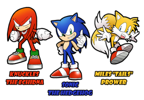 Team Sonic by SandikaRakhim