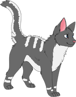 Cat - Adoptable (Closed) by Adopts-Only