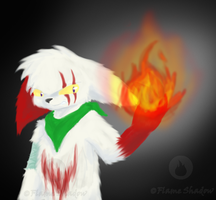 63. Do Not Disturb by Flame-Shadow