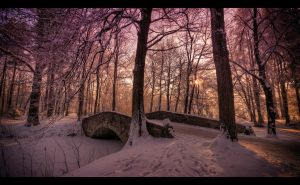 Winter scenery... 5 by PawelJG
