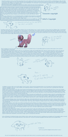 of copyrights and species by monochromera