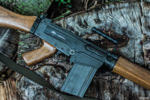 IMBEL FN FAL Profile by spaxspore