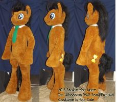 MLP Dr. Whooves Pony Fursuit - finished by AtalontheDeer